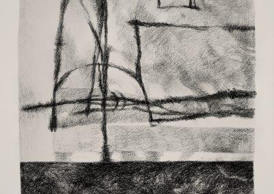 002 - carboncillo y grafito s.papel - 30x36 cm.