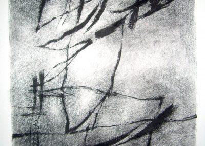 004 - litografía y carboncillo s.papel - 30x26 cm.