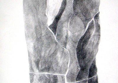 005 -carbonilla y grafito s.papel-46x28 cm.